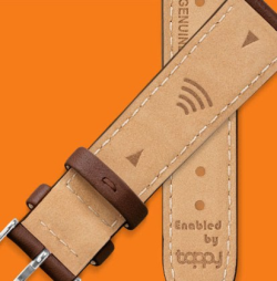 Timex Pay Watchband